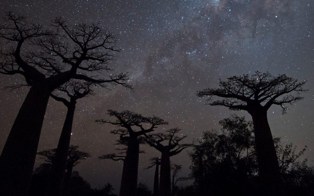 Madagaskarin kiertomatka 4.-22.10.2020