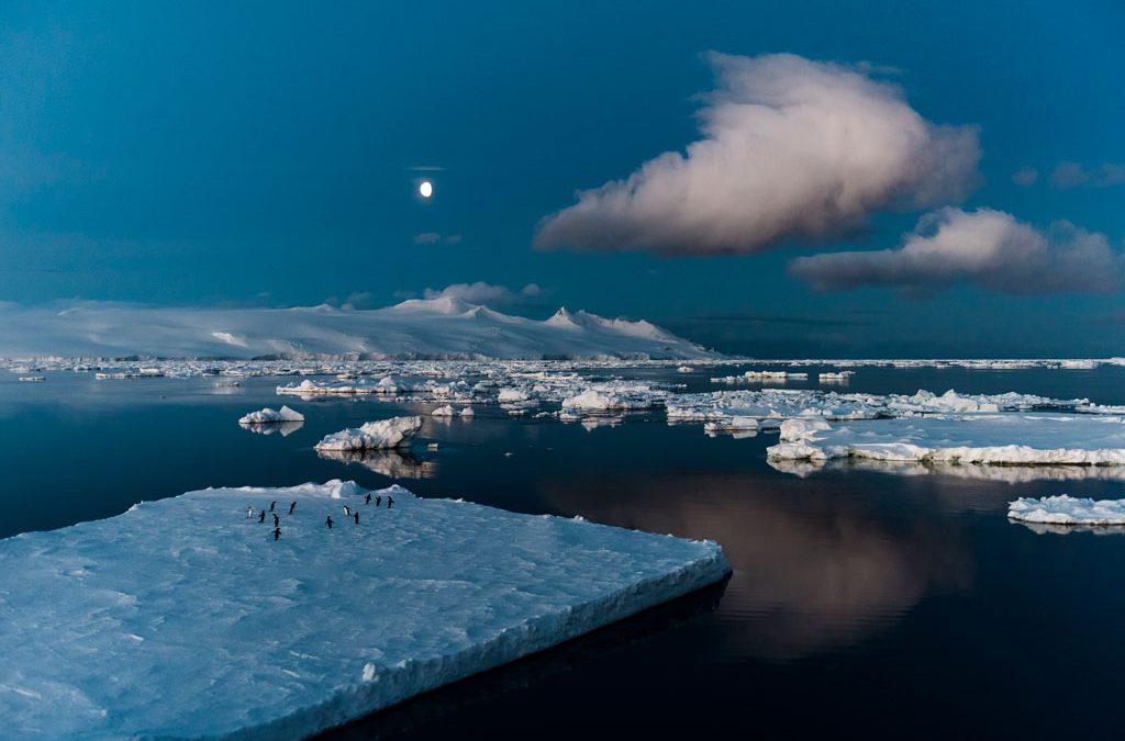 Etelämantereen erikoisristeily 28.10.-16.11.2019