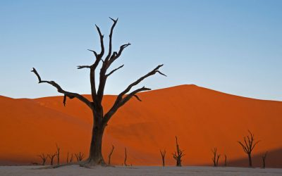 Namibian kiertomatka 6.-24.9.2019